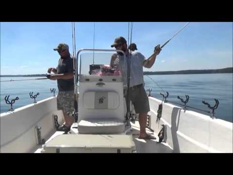 Clarks hill striper fishing 2015 youtube for Clarks hill fishing report