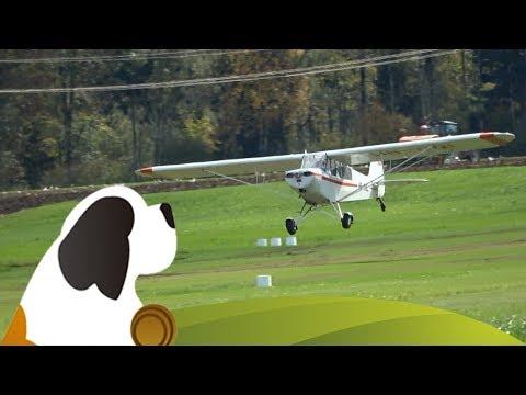 Hubschrauber & Flugzeug-Starts Aérodrome De La Gruyère (LSGT)  FR