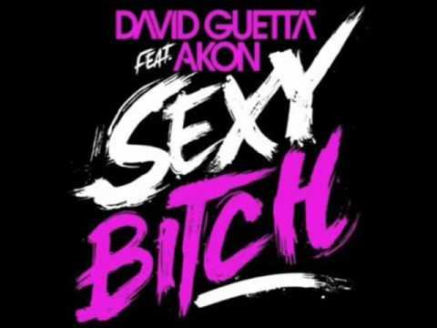 David Guetta feat. Akon & Sarah  - Sexy Bitch DJ Schan Remix