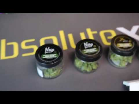 Medical Marijuana Extracts, Absolute Xtract - Port City Alternative, Stockton California