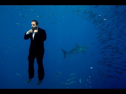 Swimming with Sharks | David Blaine