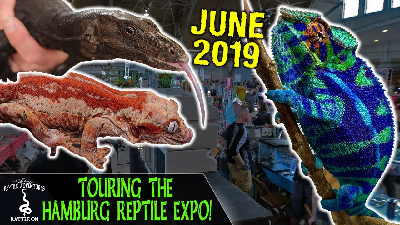 TOURING THE HAMBURG REPTILE EXPO!