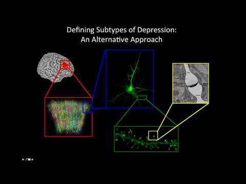 Finding and Fixing Broken Brain Circuits in Depression