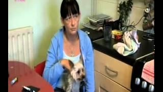 Dead Behind Bars - BBC Three documentary