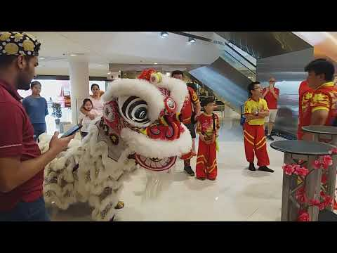 Singapore KST Lion Dance On High Pole performances at Thomson Plaza on Day 10 of CNY 25/2/18