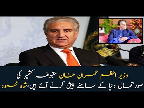 Foreign Minister Shah Mehmood Qureshi addresses press conference in New York