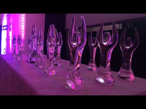 Mick's Garage Founders Honoured at 2017 Net Visonary Awards