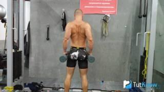 Шраги с гантелями - техника выполнения упражнения