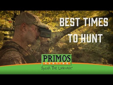 Best Times To Hunt Deer