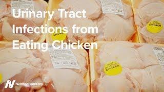 Infekce močových cest z konzumace kuřat