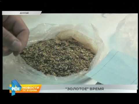 Промышленное золото в Иркутской области регулярно крадут с приисков