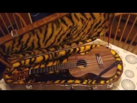 home made DIY ukulele case