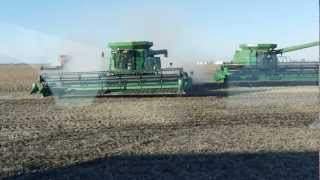 Harvesting 8500 Acres of Soybeans