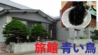 【今回訪問地】 ・羽幌町天売島「旅館 青い鳥」 天売島に行く事を決めた...