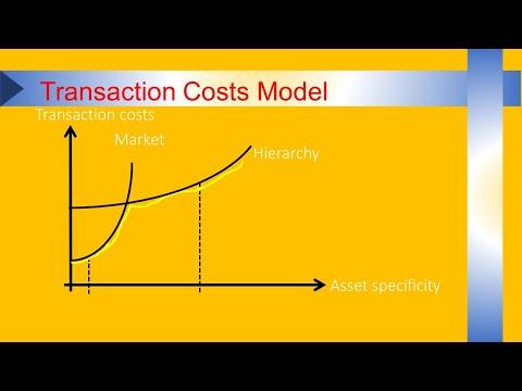 Transaction Costs Model