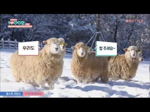 [Eng Sub] HY10MLIKES FUNNY Part 15 Hyoyeon and the baby sheep