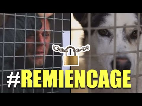 LOCKED IN A CAGE FOR 87 HOURS (REMI GAILLARD)