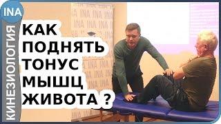 Как восстановить мышцы живота и получить плоский живот Прикладная кинезиология