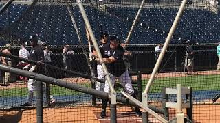 Yankees' DJ LeMahieu takes BP in spring training
