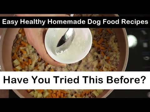 Easy Healthy Homemade Dog Food Recipes - Have You Tried This Before