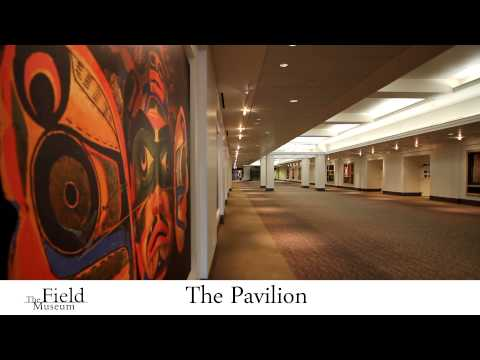 Field Museum Event & Meeting Space Rentals, Chicago, Illinois