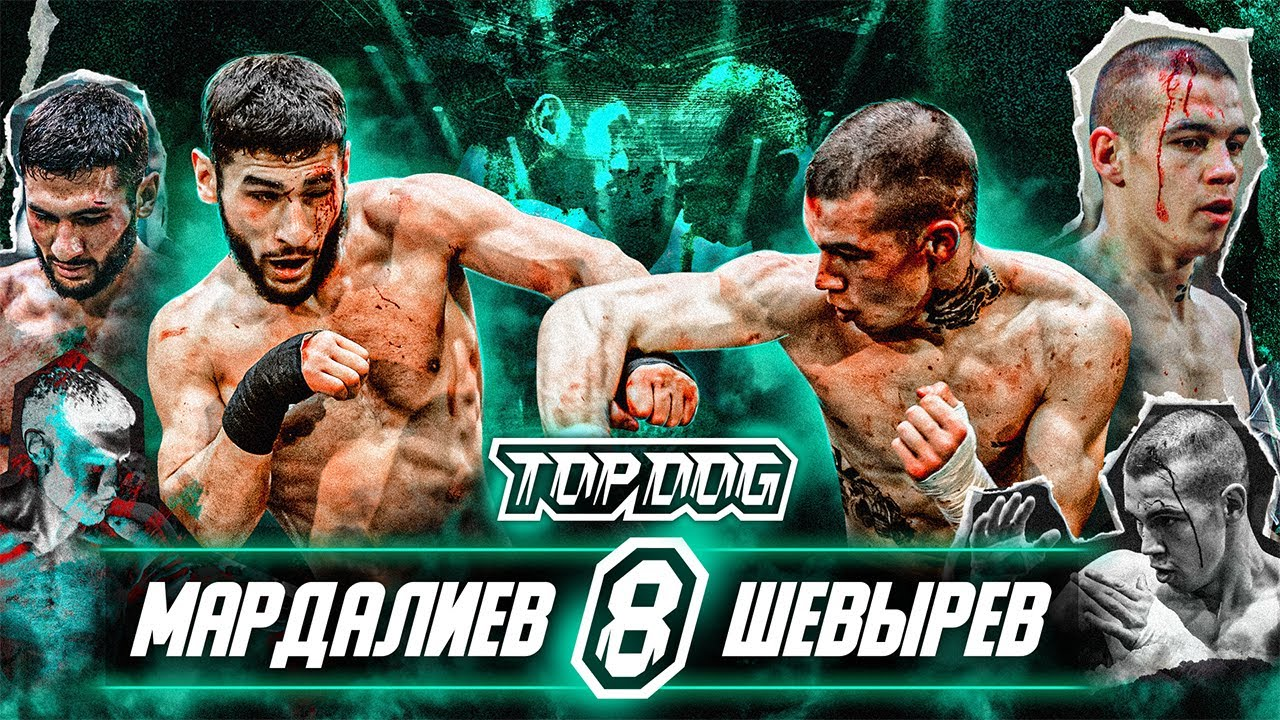 Download Алисафа Мардалиев vs. Валерий Шевырёв | TDFC8