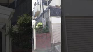 仁川台と言えば 宝塚市の落ち着いた住宅街のはず。 ベランダに犬二頭を...