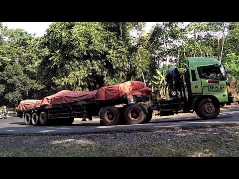 Truck Trailer Hino Ijo VS Hino Putih Truk Kontainer Truk Tronton Fuso Hino Isuzu Tikungan Timez