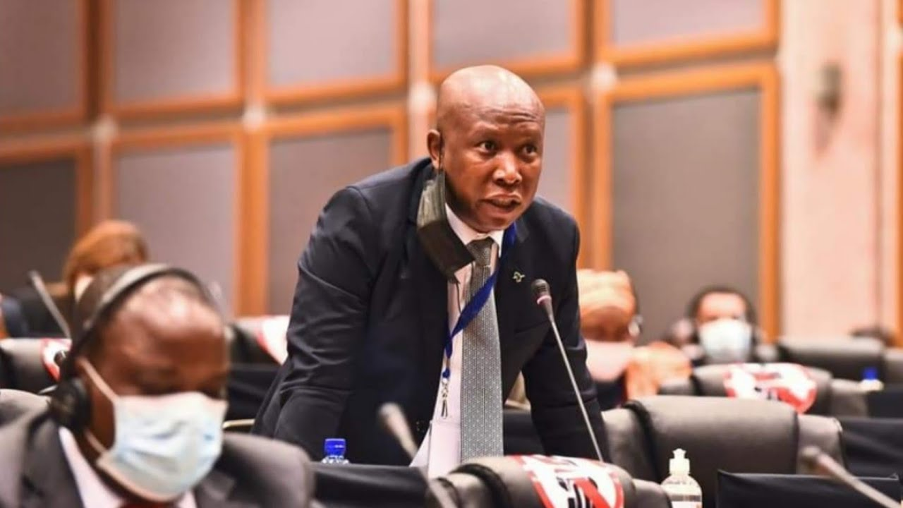Julius Malema   Chaos  African Parliament  Watch All the Drama