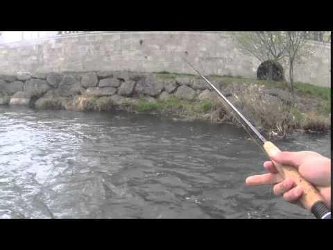 pesca-de-truchas.-a-ninfa-y-mosca-seca