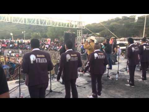 Banda Potranca Concha Del Alma