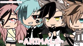 Animals || GLMV || Gacha Life