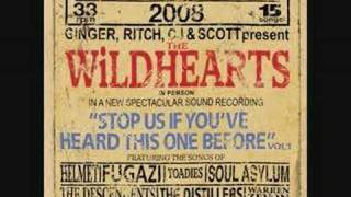 Watch Wildhearts Understanding Jane video