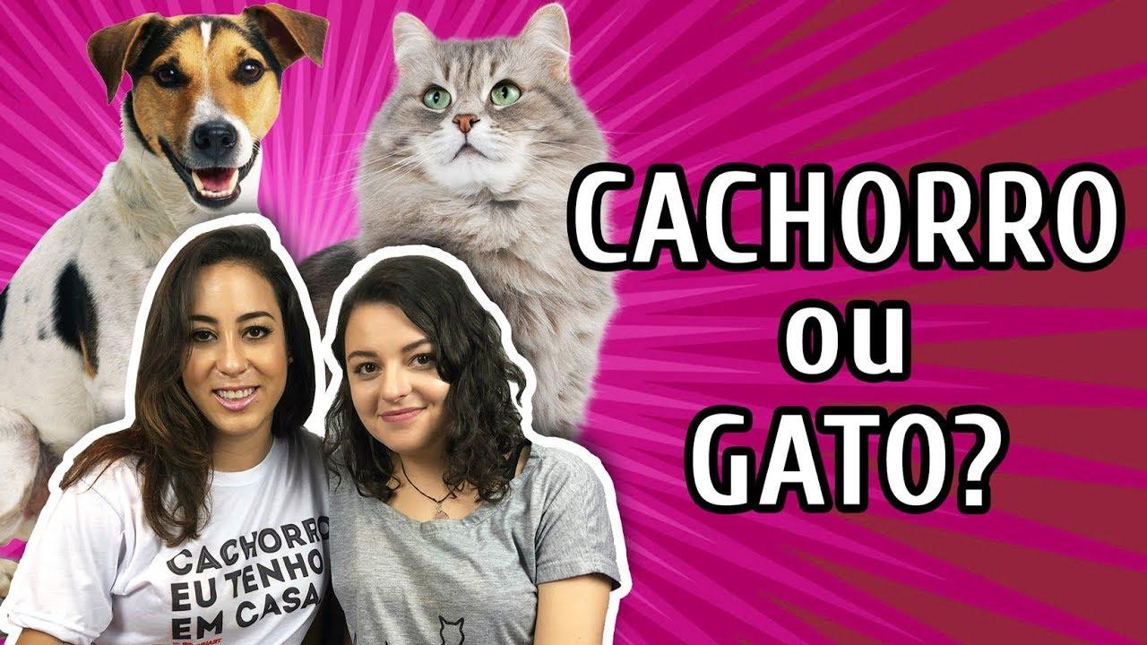 GATO ou CACHORRO: QUAL ESCOLHER? com Isa Gateira