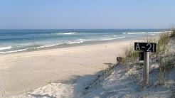 Island Beach State Park, Seaside Park, New Jersey (Best in NJ)