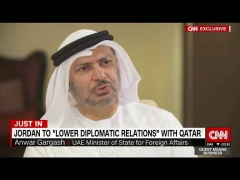 Top UAE diplomat on rift with Qatar