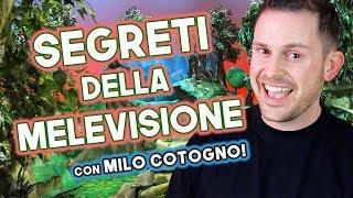 I SEGRETI DELLA MELEVISIONE! - Salotto della Valle [ft. Lorenzo Branchetti]