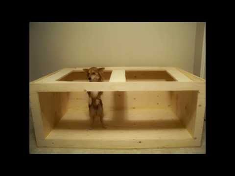 How to build a plywood aquarium youtube for Plywood fish tank