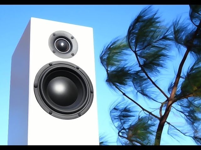 Review!  The Totem Acoustic SKY.