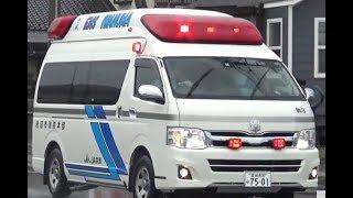今までに撮影してきた派手、ナイスデザインな救急車 湘南鎌倉総合病院 ...
