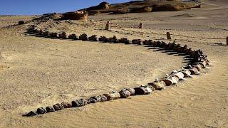 Cet homme n'en a pas cru ses yeux quand il a trouvé ça dans le désert...