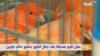 ملك جمال للطيور في #عمان