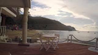 castara naturalist beach resort tobago grouper