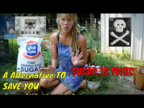 TOXIC SUGAR !HOW TO BREAK THE ADDICTION! WATCH THE ANSWER IS HERE