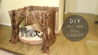 DIY PVC Pipe Dog Canopy