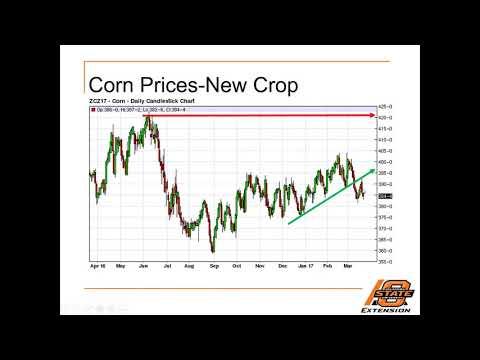 Commodity Marketing Strategies