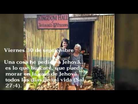 Reflexiones testigos de. Jehová