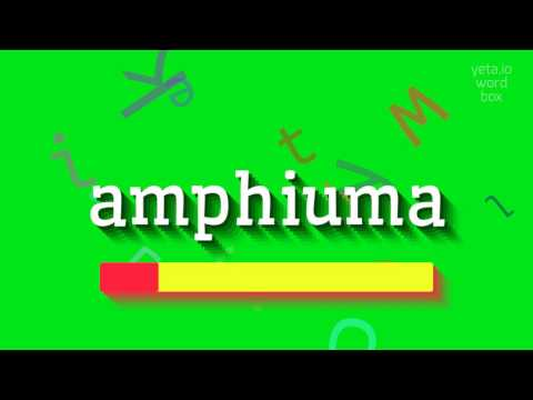 "How to say ""amphiuma""! (High Quality Voices)"