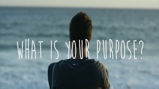 What is Your Purpose? Christian Motivational Video