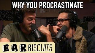 Why You Procrastinate (Rabbit Hole)